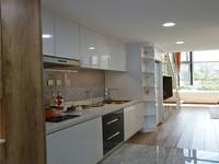 石药健康城加推LOFT复式公寓 首付三万 买一层送一层