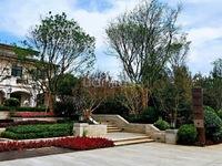 单价低 花园电梯洋房 海景别墅 精装修 单价低总价低 刚需改善大小户型