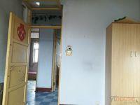 白石路白梅街九中下面两室一厅南北通透房东直租!